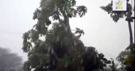 The Awdal and Sahil Regions had a huge proble with the Cyclone stormand wind