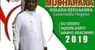 Aqoon Yahan Axmed Ismaciil Wayrax oo shaaciyay inuu u tartamayo golaha deeganka Caasimada Somaliland
