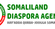 PRESS STATEMENT: 	  SLDA Congratulates Somaliland Diaspora for the 58th Somaliland's Anniversary and Remarks the Event as Highly Momentous for Somaliland History.
