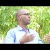 XOG-TIBAAX: Qorshaha Xukuumadda ee Xeerka Saxaafadda oo xalaalnimadiisa laga dardaar-warinayo iyo Xaaladda Warbaahinta Somaliland (DAAWO MUUQAAL)