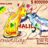 Colonel Bihi's $80.000.000 Corruption In One Year !