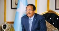 The Shady Character: The Resident of Villa Somalia